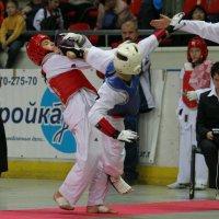 Идут предварительные бои :: Вячеслав