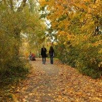 осень во всей  красе :: Ирина ***