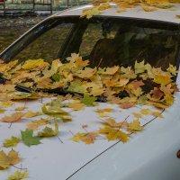 Осень в городе :: Владимир Кроливец