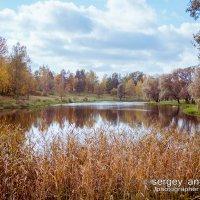 осень :: Сергей Антонов