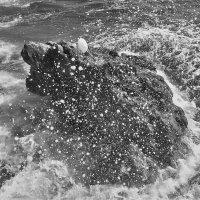Бьется о камень волна :: Alexandr Zykov