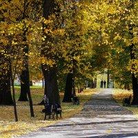 Дорожка в осень :: Igor Khmelev