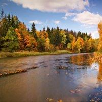 Осенний день :: Юрий Кольцов