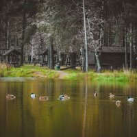Берендеевы пруды :: Ksenya Morozik