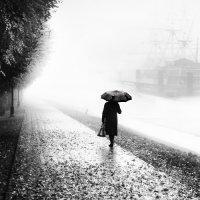 осенний туман :: Виталий Исаев