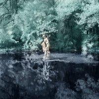 Старый парк :: Alexander Varykhanov