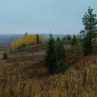 В начале октября... :: Федор Кованский