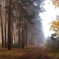 Утро осеннего дня... :: Лесо-Вед (Баранов)