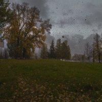 Ветер срывает листья ржавого октября. :: Роман Макаров