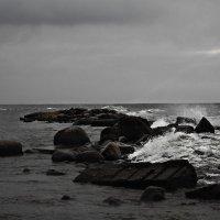 Финский залив :: Полина