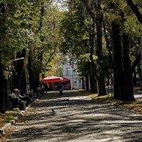 Киевская осень 2014 Фото №3 :: Владимир Бровко