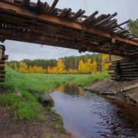 Старенький мостик. :: Анатолий Бахтин