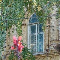 Старый дом :: Юлия Грозенко