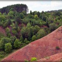 Природа юга Удмуртии :: muh5257