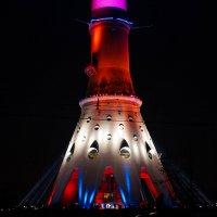 Фестиваль света :: Андрей Воробьев