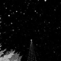В  новогоднюю ночь 31 на 1 :: Сергей Ветчинкин