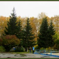 "Фотокартина "" Осень "". :: Мила Бовкун"