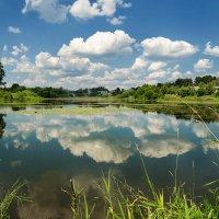 Река Серая :: Gordon Shumway