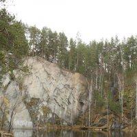 Лесное озеро :: Валерий Никитин