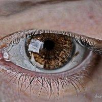 всевидящее око :: Владимир Родин