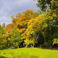 Осень в Ботаническом саду :: Sergey Lebedev