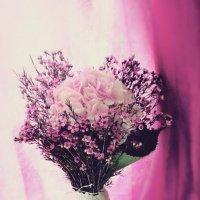 Pink :: Олеся Сова