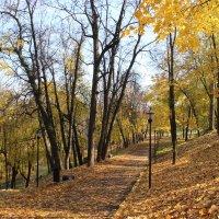 Александровский сад 3 :: Анна -