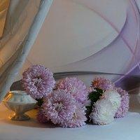 Любимый цвет :: Наталия Лыкова