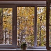 За окнами осень :: Alexandr Zykov