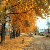 Осенняя прогулка :: Альберт Ханбиков
