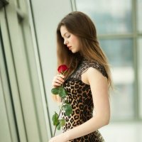 Red rose :: Мария Ерохина