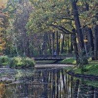 В старом парке :: Alexandr Zykov