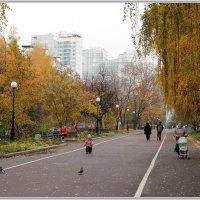 Осень :: Владимир Попов