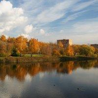 Октябрь в Подмосковье. :: lady-viola2014 -