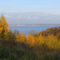 Осенние берега Волги :: Ната Волга