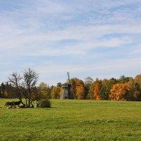 Черные лошади y старой мельницы :: AstaA
