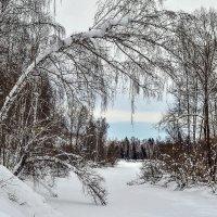 Зимняя река. :: юрий Амосов