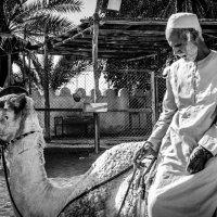 бедуин на привале :: Vasiliy V. Rechevskiy