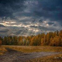 Осень! :: סּﮗRuslan HAIBIKE Sevastyanovסּﮗסּ