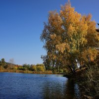 Осень :: Алексей Golovchenko