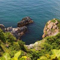 Ёжики выползают из моря :: Boris Khershberg