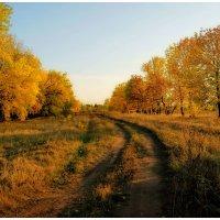 золотая осень :: герасим свистоплясов