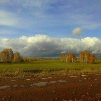 Сырая осень. :: nadyasilyuk Вознюк