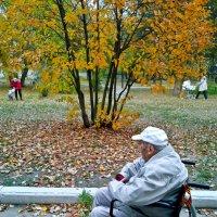 Смена поколений :: Владимир Нев