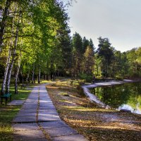 Прогулка по осеннему парку :: Надежда Хлыстова