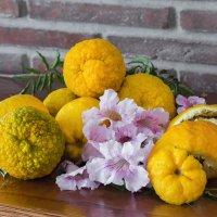 О фактурности декоративных апельсинов :)) :: Марина