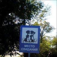 Вот такой знак в парке :: Татьяна Пальчикова