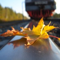 Осень на ж/д :: Николай Лапин