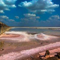 Озеро Сасык_Севаш. :: Ирина Лядова