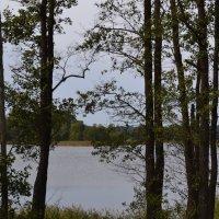 Вечер у озера. :: zoja